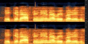 Waveform analysis of spoken voice